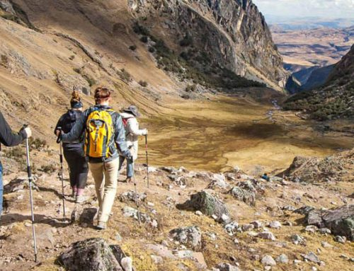 Tour Valle de Lares a Machu Picchu